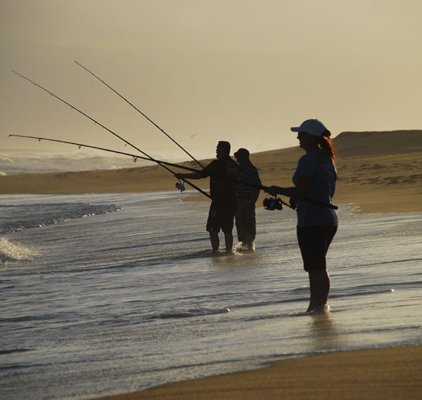 Newcastle Sight-seeing / Fishing Tours