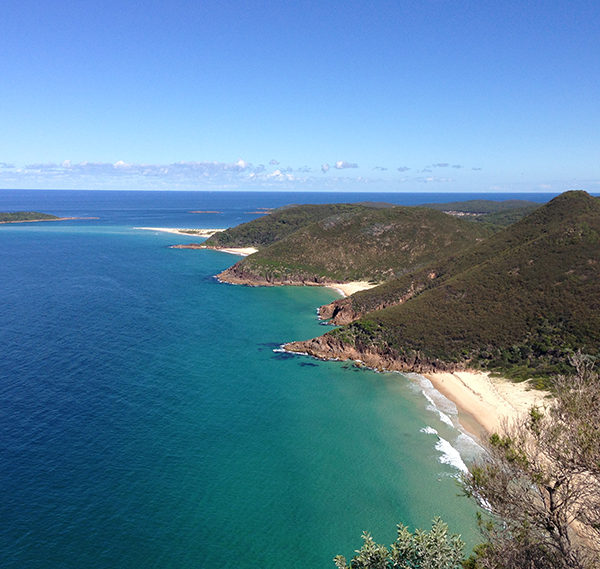 Port Stephens Sight-seeing Tours